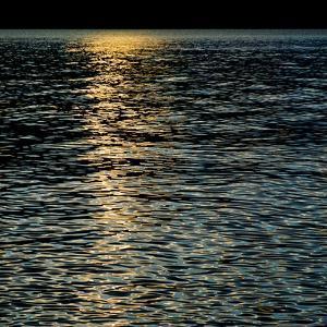 The Far Horizon by Ursula Abresch