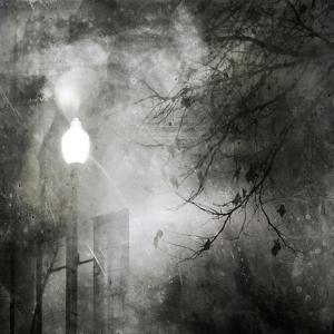 To Walk at Night by Ursula Abresch