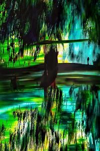 Walk in Beauty by Ursula Abresch