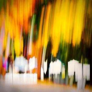 White Picket Fence by Ursula Abresch