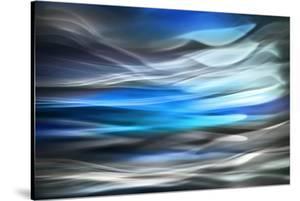Wild Blue by Ursula Abresch