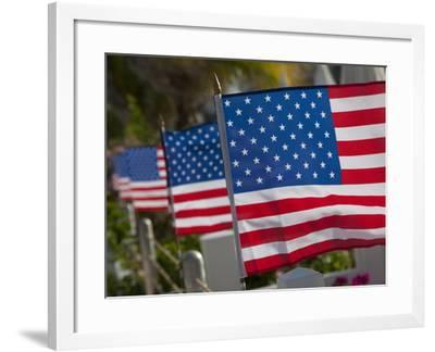 Us Flags Attached to a Fence in Key West, Florida, United States of America, North America-Donald Nausbaum-Framed Photographic Print