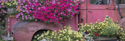 https://imgc.artprintimages.com/img/print/usa-alaska-chena-hot-springs-panorama-of-old-truck-and-flowers_u-l-q1bljc40.jpg?p=0