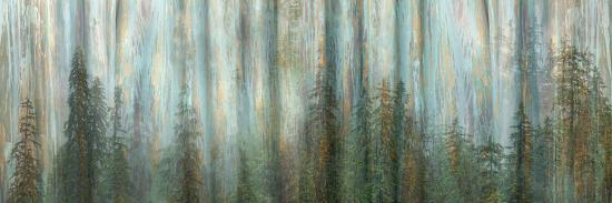 USA, Alaska, Misty Fiords National Monument. Panoramic collage of paint-splattered curtain.-Jaynes Gallery-Photographic Print