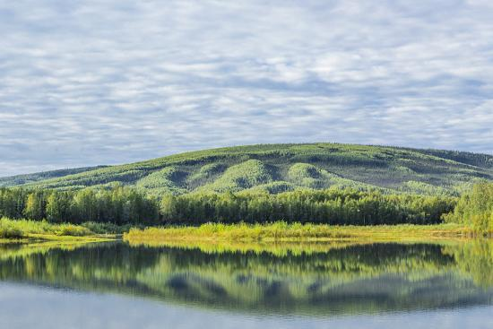 USA, Alaska, Olnes Pond. Landscape with pond reflection.-Jaynes Gallery-Premium Photographic Print