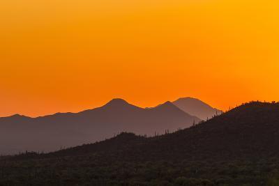 USA, Arizona, Saguaro National Park. Tucson Mountains at Sunset-Cathy & Gordon Illg-Photographic Print