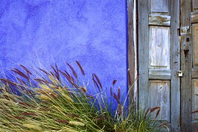 https://imgc.artprintimages.com/img/print/usa-arizona-tucson-colorful-wall-and-weathered-door_u-l-q1gc3g70.jpg?p=0