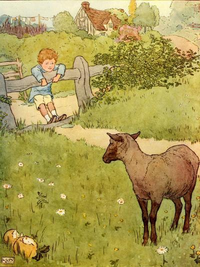 USA Baa Baa Black Sheep Book Plate--Giclee Print
