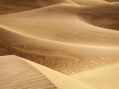 USA, California, Death Valley National Park. Close-Up View of Mesquite Flat Dunes-Ann Collins-Photographic Print