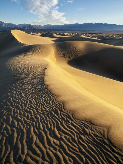 USA, California, Death Valley National Park. Early Morning Sun Hits Mesquite Flat Dunes-Ann Collins-Photographic Print