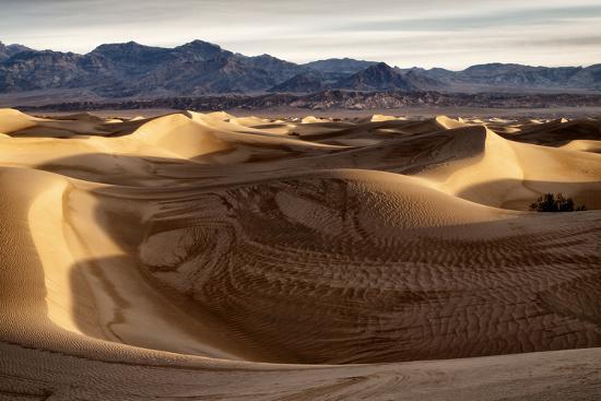 USA, California, Death Valley National Park, Mesquite Flat Dunes after Rain-Ann Collins-Photographic Print