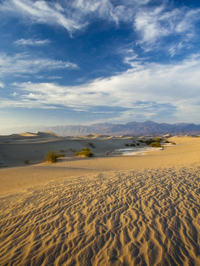 USA, California, Death Valley National Park, Mesquite Flat Sand Dunes-Walter Bibikow-Photographic Print