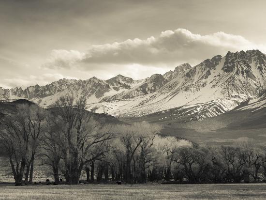 USA, California, Eastern Sierra Nevada Area, Bishop, Landscape of the Pleasant Valey-Walter Bibikow-Photographic Print
