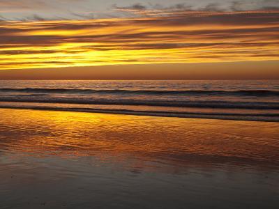 USA, California, La Jolla. Sunset Reflected on Beach at La Jolla Shores-Ann Collins-Photographic Print