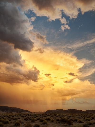 USA, California, Mojave National Preserve, Desert Rain Squall at Sunset-Ann Collins-Photographic Print