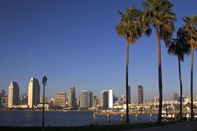 USA, California, San Diego. San Diego Skyline and Palm Trees-Kymri Wilt-Photographic Print