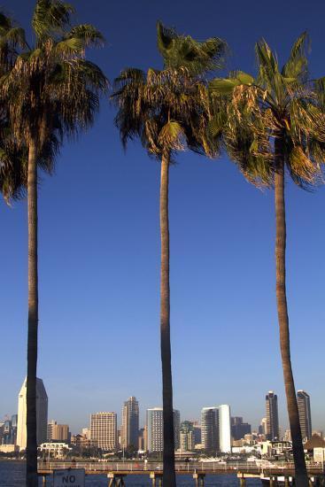 USA, California, San Diego. San Diego Skyline and Palm Trees-Kymri Wilt-Photographic Print