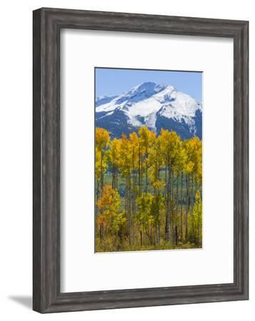 USA, Colorado. Fall Aspens and Mountain-Jaynes Gallery-Framed Photographic Print