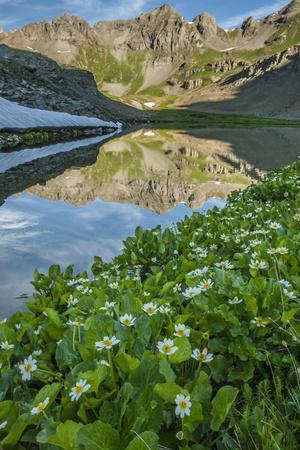 https://imgc.artprintimages.com/img/print/usa-colorado-san-juan-mountains-clear-lake-reflection-and-marigolds_u-l-q12t20u0.jpg?p=0
