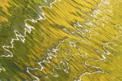 https://imgc.artprintimages.com/img/print/usa-colorado-san-juan-mountains-reflection-in-woods-lake_u-l-pu3d9d0.jpg?p=0