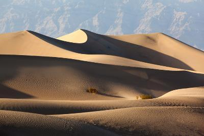 USA, Death Valley National Park, Mesquite Flat Sand Dunes-Catharina Lux-Photographic Print