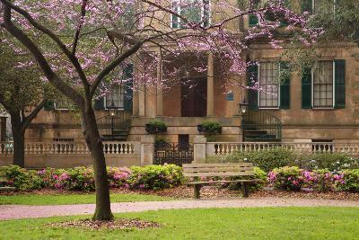 USA, Georgia, Savannah, Historic Owens Thomas House in the Spring-Joanne Wells-Photographic Print