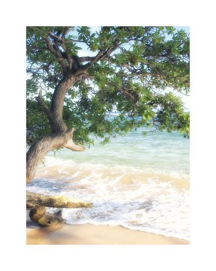 USA, Hawaii, Kauai-Savanah Plank-Giclee Print