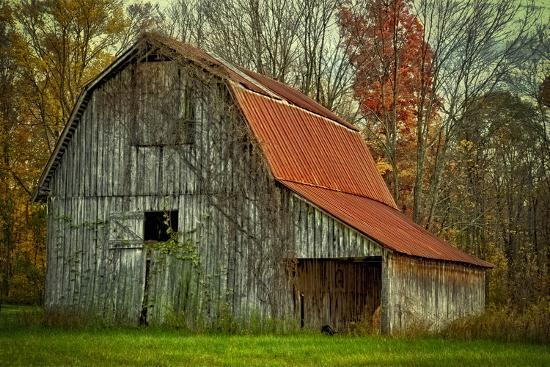 USA, Indiana. Rural Landscape, Vine Covered Barn with Red Roof-Rona Schwarz-Photographic Print