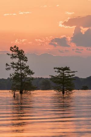 https://imgc.artprintimages.com/img/print/usa-louisiana-atchafalaya-national-wildlife-refuge-sunrise-on-swamp_u-l-q1gcob90.jpg?p=0