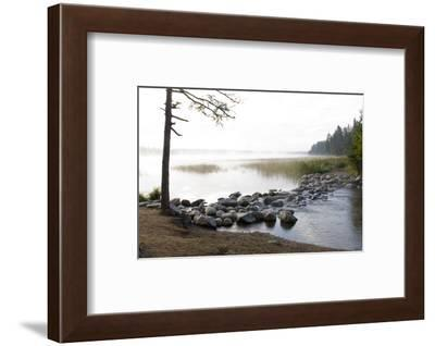 USA, Minnesota, Itasca State Park, Mississippi Headwaters-Peter Hawkins-Framed Photographic Print