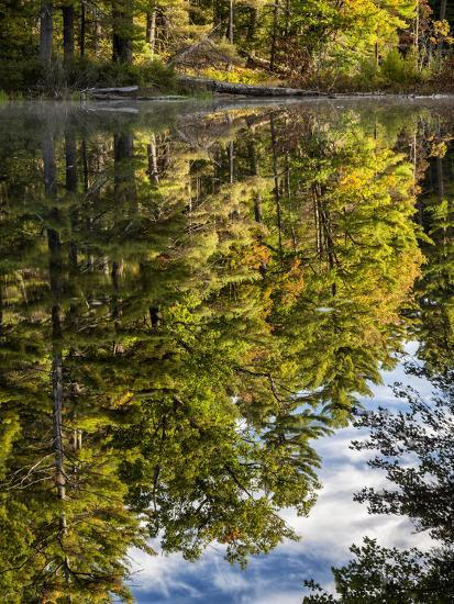 USA, New Hampshire, White Mountains, Reflections in Red Eagle Pond-Ann Collins-Photographic Print