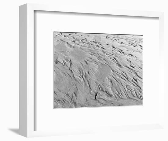 USA, Oregon, Manzanita. Black and white of beach sand patterns.-Jaynes Gallery-Framed Photographic Print