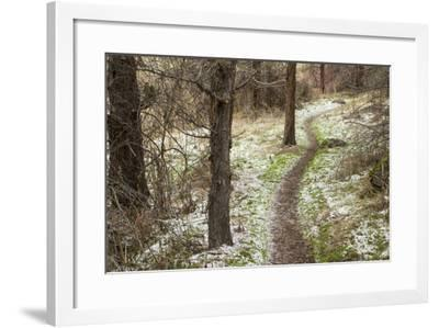 USA, Oregon, Smith Rock State Park Winter Trail-Brent Bergherm-Framed Photographic Print