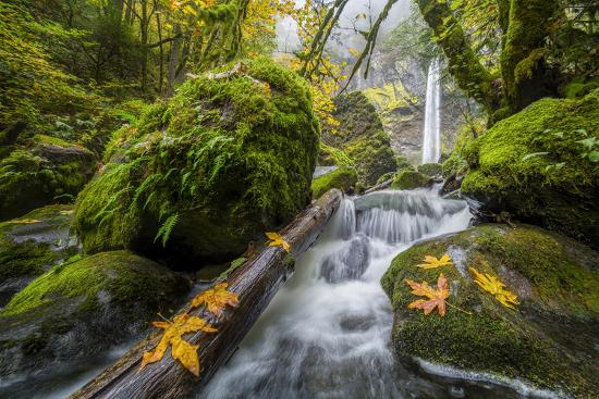 USA, Oregon. View from Below Elowah Falls on Mccord Creek in Autumn in the Columbia Gorge-Gary Luhm-Photographic Print
