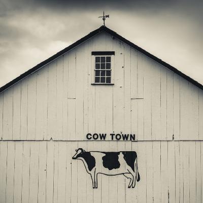 USA, Pennsylvania, Dutch Country, Smoketown, Barn with Cow Art-Walter Bibikow-Photographic Print