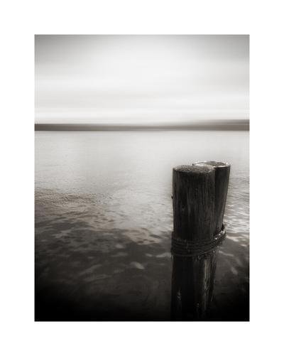 USA, Seattle, view from Alki b-Savanah Plank-Giclee Print