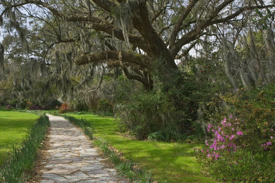 USA, South Carolina, Charleston. Stone pathway in Magnolia Plantation.-Jaynes Gallery-Photographic Print