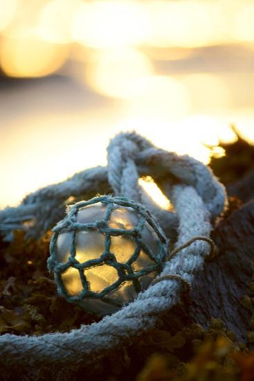 USA, Southeast Alaska Near Ketchikan, Japanese Glass Fishing Float-Savanah Stewart-Photographic Print