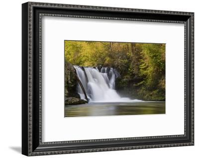 USA, Tennessee, Great Smoky Mountains National Park. Abrams Falls Landscape-Jaynes Gallery-Framed Photographic Print