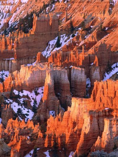USA, Utah, Bryce Canyon with snow-Theo Allofs-Photographic Print