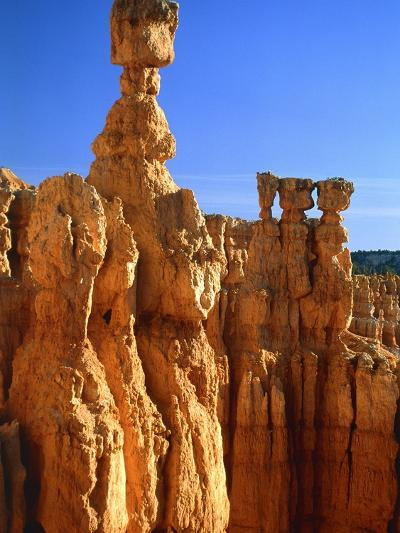 USA, Utah, Bryce Canyon-Rainer Hackenberg-Photographic Print