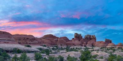 https://imgc.artprintimages.com/img/print/usa-utah-canyonlands-national-park-the-needles-district-chesler-park-trail_u-l-q12su550.jpg?p=0