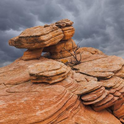 USA, Utah, Dixie National Forest. Sandstone Formation in Yant Flats-Jaynes Gallery-Photographic Print