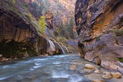 USA, Utah, Zion National Park. the Narrows of the Virgin River-Jamie & Judy Wild-Photographic Print