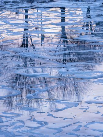 https://imgc.artprintimages.com/img/print/usa-vermont-burlington-ice-and-tree-reflections-in-frozen-lake-champlain_u-l-q1gxlah0.jpg?p=0