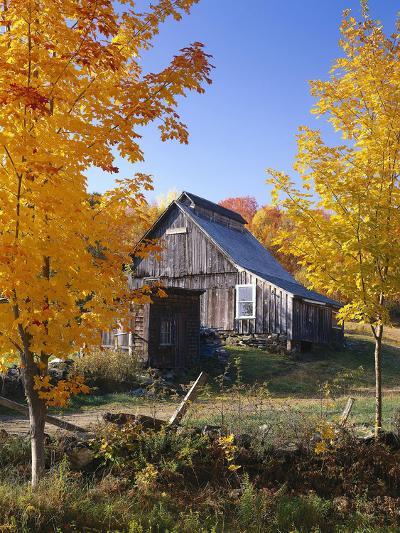 USA, Vermont, House, Old, Maple Trees, Autumn-Thonig-Photographic Print