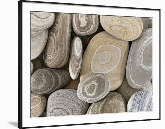 USA, Washington, Seabeck. Close-up of beach stones.-Don Paulson-Framed Photographic Print