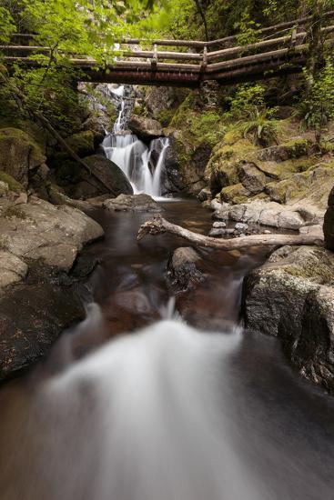 USA, Washington State, Beacon Rock State Park. Hardy Creek.-Brent Bergherm-Photographic Print