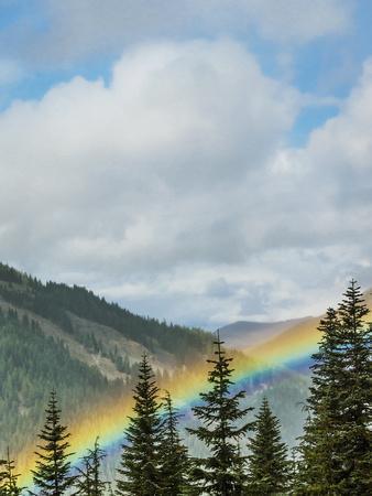 https://imgc.artprintimages.com/img/print/usa-washington-state-crystal-mountain-rainbow-in-valley-through-trees_u-l-q1gxlg60.jpg?artPerspective=n