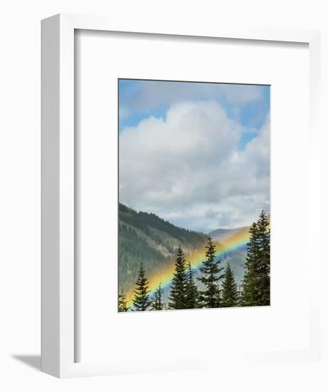 Usa, Washington State, Crystal Mountain. Rainbow in valley through trees.-Merrill Images-Framed Photographic Print